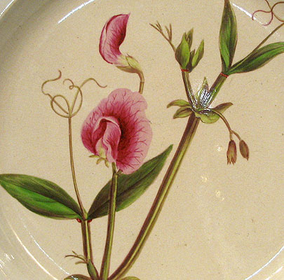 Ceramics<br>19th Century<br>SOLD  An English Creamware Botanical Plate